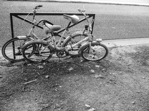 bike-8-2